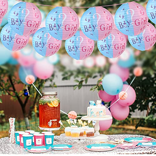 6 Pieces Gender Reveal Party Hanging Decorations Blue Pink