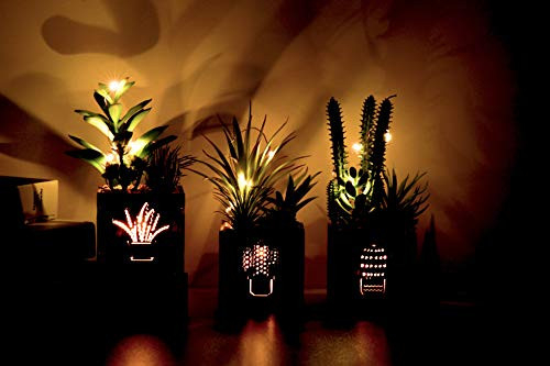 BEGONDIS Set of 3 Artificial Succulents with Led Lights in