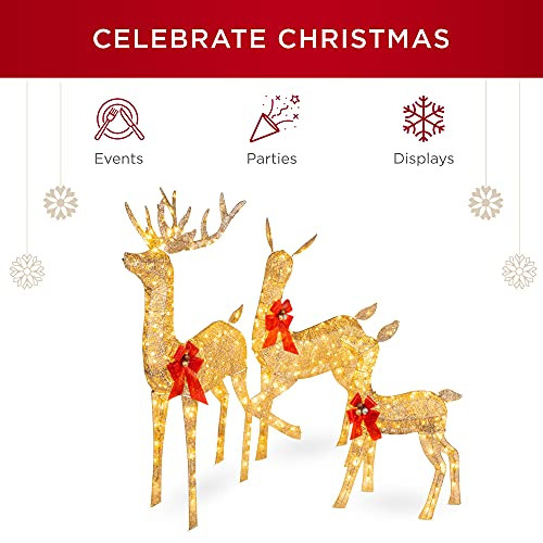 Best Choice Products 3-Piece Lighted Christmas Deer Family